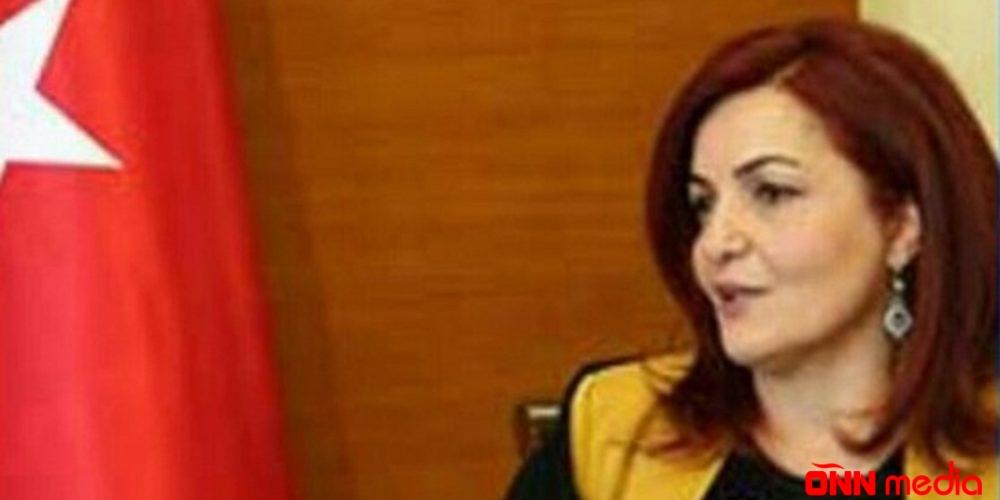 """Etiraf edirəm """"cahiləm"""" – professor Aygün Attar"""