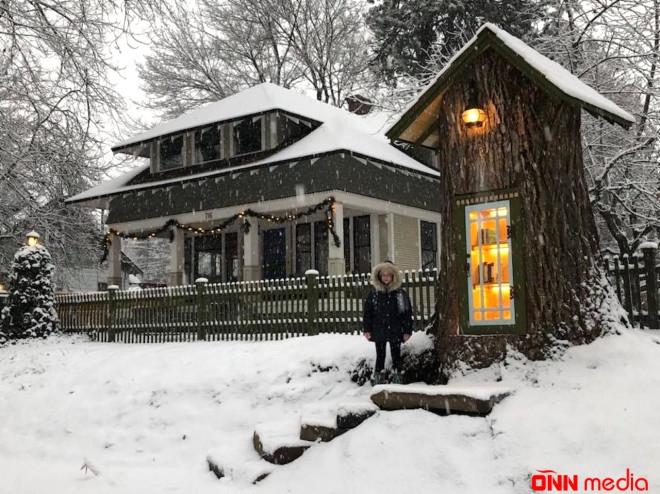 110 illik ağacı oyaraq görün nə etdi — MARAQLI FOTOLAR