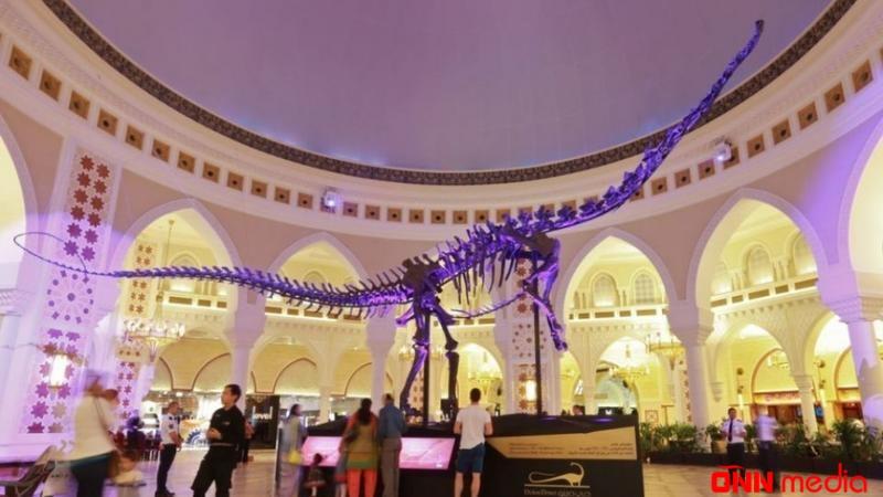 Ərəblər nəhəng dinozavr skletini Dubaya gətirdilər – 4 MİLYONA SATILIR