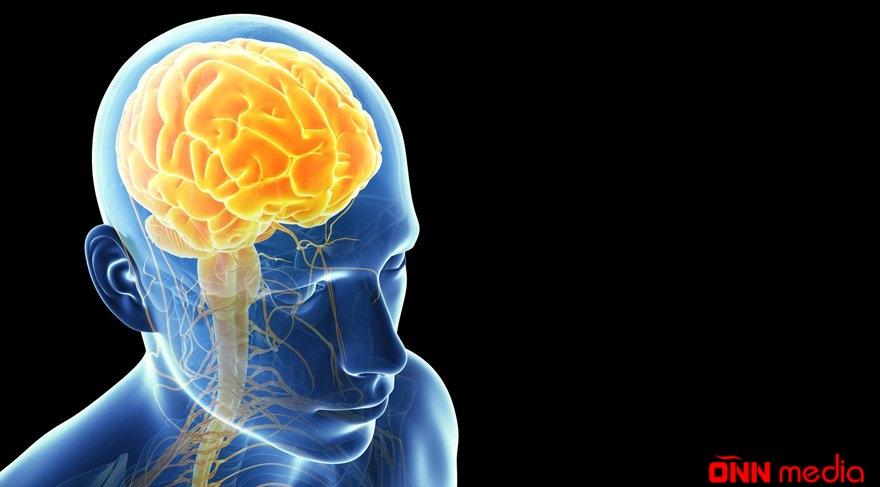 Arıq qalmaq, eyni zamanda beynin yaxşı işləməsi üçün nə yeməliyik?