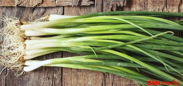 Yaşıl soğanın faydası – Bu ağrını kəsir
