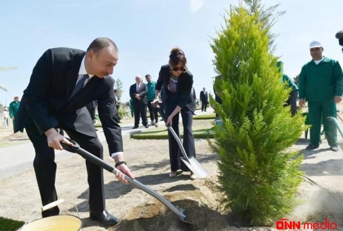 Prezident və xanımı Şamaxıda ağac əkdi