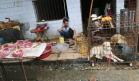 Çindən dünyaya yayılan virusun səbəbi ortaya çıxdı: Dəhşətli detallar