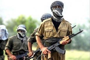 Terrora hazırlaşan PKK-çılar ələ keçdi