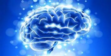 Beyniniz yaxşı işləyirmi? – TESTLƏ YOXLAYIN