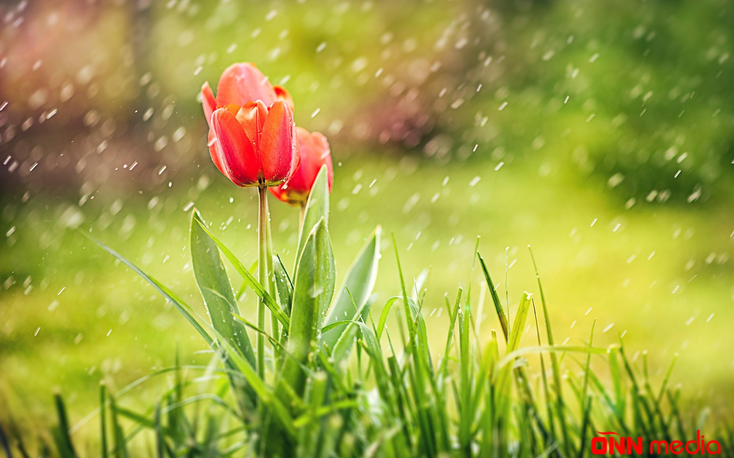 Mayın son gününün havası – Şimşək, dolu, yağış