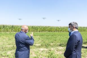 Azərbaycanda ilk dəfə qarğıdalı sahələri dronlar vasitəsilə dərmanlandı