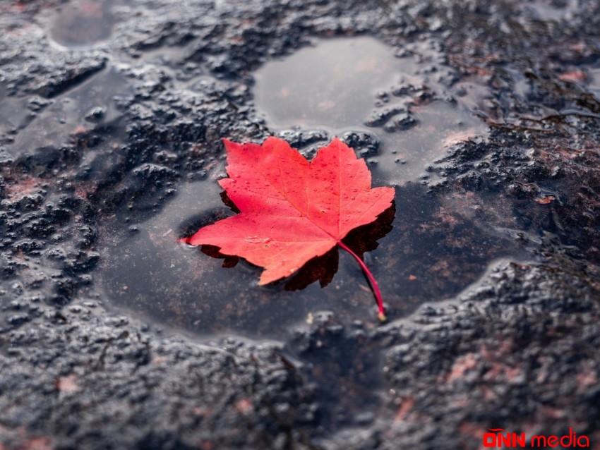 Yağış, leysan, külək… – SABAHIN HAVASI