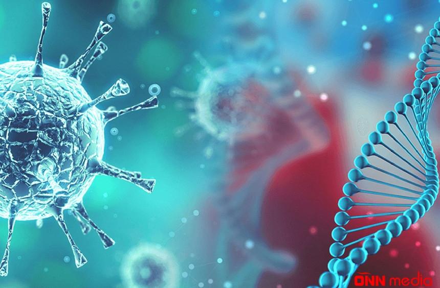 Pandemiya uzun müddət… – BƏDBİN PROQNOZ