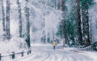 Sabahın HAVASI: Bu ərazilərdə yollar buz bağlayacaq
